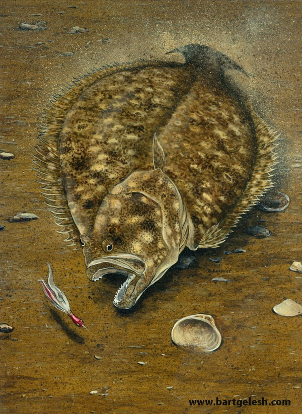 bucktail flounder