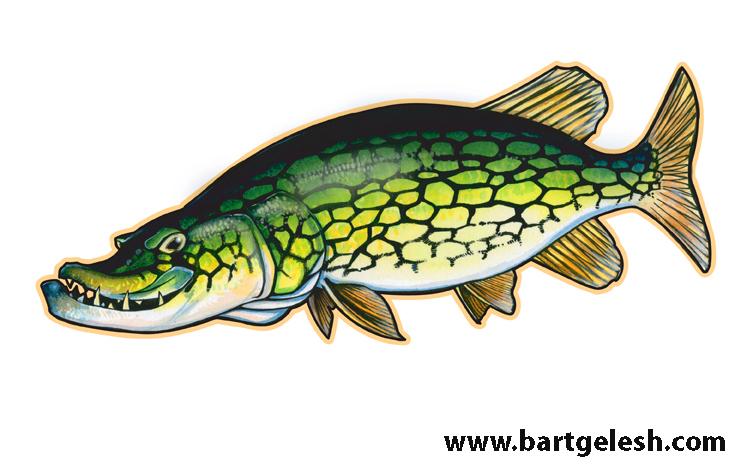 Cartoon pickerel bartgelesh for Fish on main